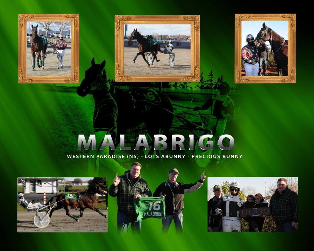 Malabrigo_v2_Proof